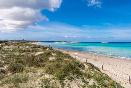 Illetes beach  in Formenter