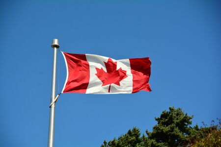 Canadian flag flies proudly in the skies.The maple leaf forever.