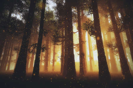 Mysterious Fairy Tale Deep Magic Forest 3D Illustration Artwork