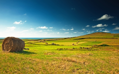 Photo for Nice spanish landscape at summer - Royalty Free Image