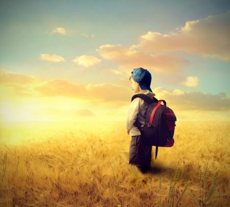 School boy on a wheat field
