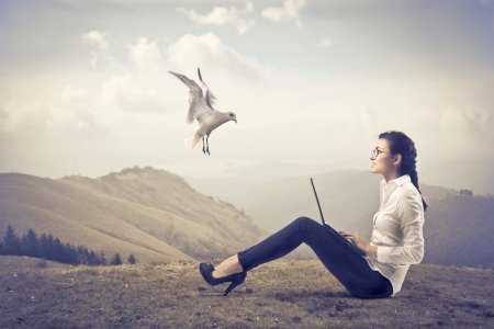 Smiling businesswoman sitting on a hill and using a laptop with seagull flying beside her