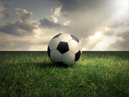 Soccer Sunlight