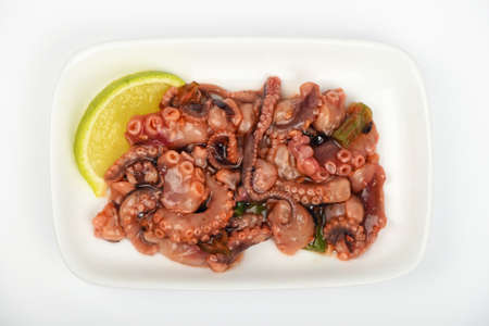 Seafood octopus cuttlefish marinated salad snack with souse on white dish plate over white background, top view