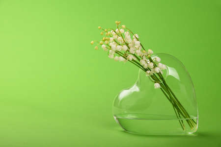 Photo pour Close up bouquet of lily of the valley fresh spring flowers in heart shaped transparent glass vase over green background with copy space, low angle view - image libre de droit
