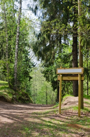 Wooden sign board on the natural trail  In the  forest park