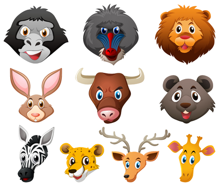 Different types of wild animals illustration: Royalty-free vector ...
