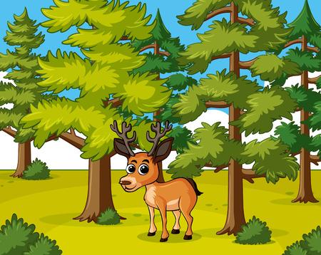 Deer living in the forest illustration