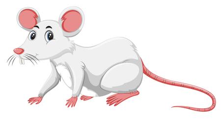 Illustration for A white rat on white background illustration - Royalty Free Image