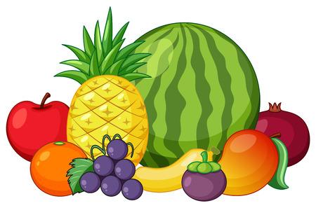 Illustration pour Set of mixed fruit illustration - image libre de droit