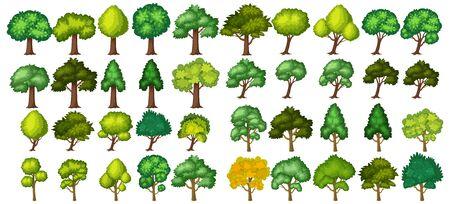 Illustration pour Big green trees on white background illustration - image libre de droit