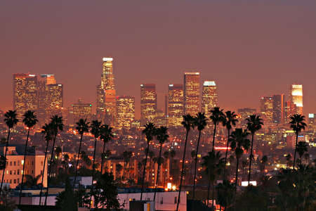 LA Skyline with Palm Trees