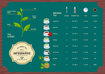 Vector Set of Tea Infographics. Classification Plants Leaf, Brewing Tea Rules and Scheme Illustration. Flat Information Concept.