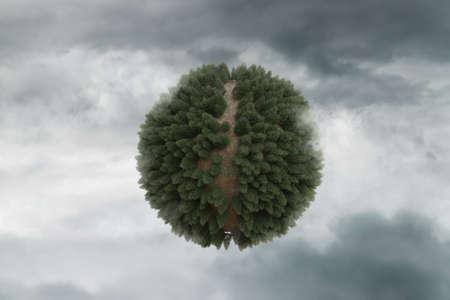 Photo pour 3d rendering of conifer forest with path in spherical shape - image libre de droit