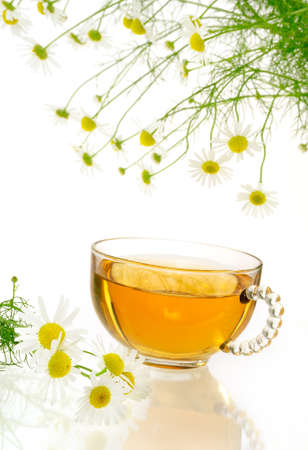 Cup of chamomile tea with fresh chamomilla flowers over white background