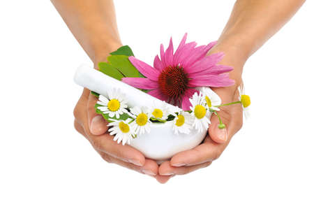 Photo pour Young  woman holding mortar with herbs - Echinacea, ginkgo, chamomile - image libre de droit