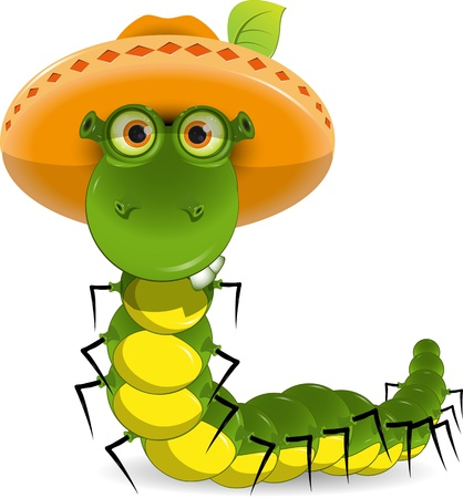 illustration of a green caterpillar with a hat