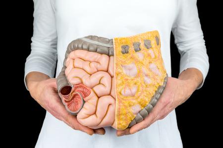 Foto de Female person holds human intestines model at body isolated on black background - Imagen libre de derechos
