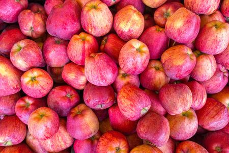 Photo for Crop of many fresh red yellow apples on market - Royalty Free Image