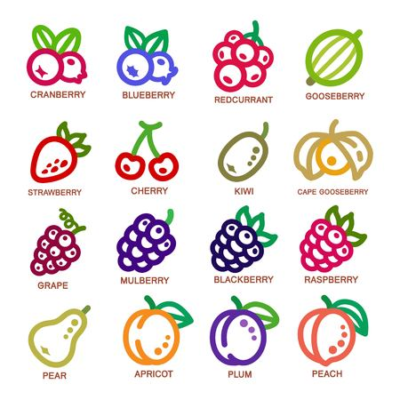 Illustration for fruit thin line icon set,vector illustration - Royalty Free Image