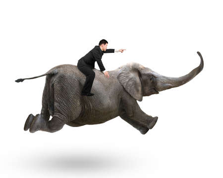 Businessman with pointing finger gesture riding on elephant, isolated on white.