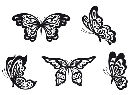 Set of black butterfly isolated on white. Vector illustration