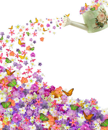 plenty flower and butterfly from vintage sprinkling can isolated on white background