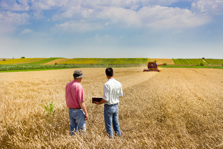 Photo pour Peasant and business man talking on wheat field during harvesting - image libre de droit