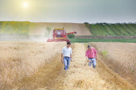 Photo pour Peasant and business man walking on wheat field during harvest - image libre de droit