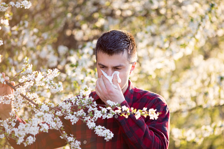 Photo for Young handsome man having allergy symptoms beside blooming tree in spring - Royalty Free Image