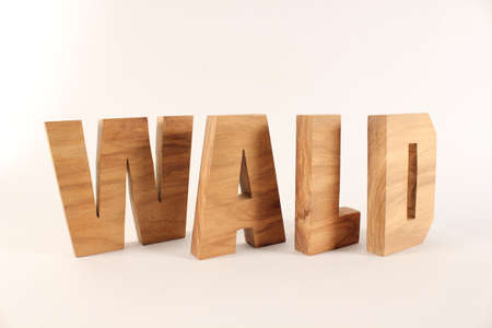 WALD German text from wood letters Holz Buchstaben white Background