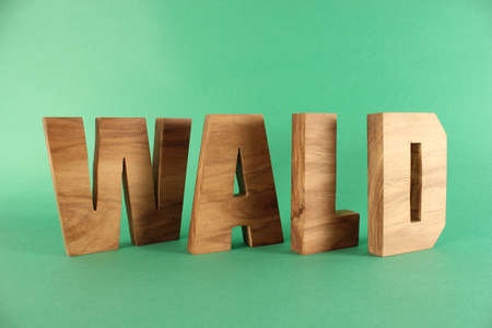 WALD German text from wood letters Holz Buchstaben black Background