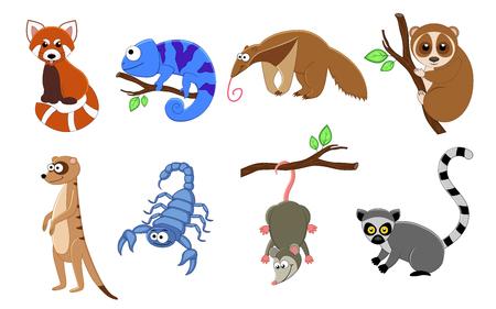 Illustration pour Set of 8 exotic animals in a cartoon style. Animals vector illustration isolated on white background. Red panda, chamelion, scorpion, anteater, lemur, loris, meerkat, opossum. - image libre de droit