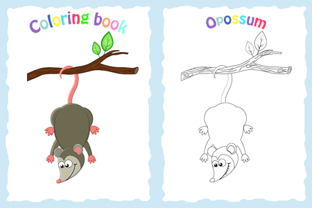 Illustration pour Coloring book page for preschool children with colorful opossum  and sketch to color. Exotic animal. - image libre de droit