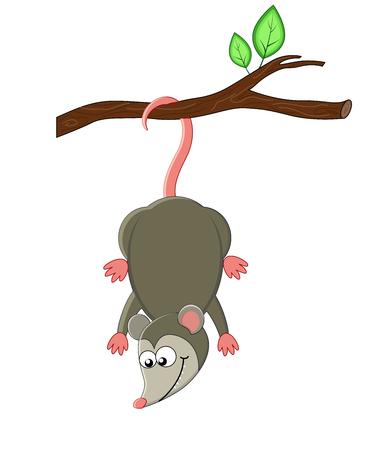 Illustration pour Cute cartoon opossuml. Vector illustration. Smiling opossum. exotic animals - image libre de droit