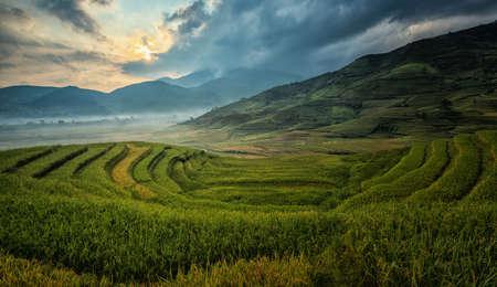 Green Rice fields on terraced in Mu Chang Chai, Vietnam Rice fields prepare the harvest at Northwest Vietnam.Vietnam landscapes