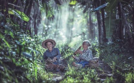 Photo pour Asian old woman working in the rainforest, Thailand - image libre de droit