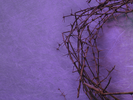 Photo for helped crown of thorns on purple background with negative space on the left side - Royalty Free Image