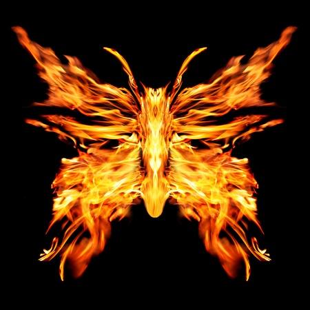 Fiery butterfly on a black background