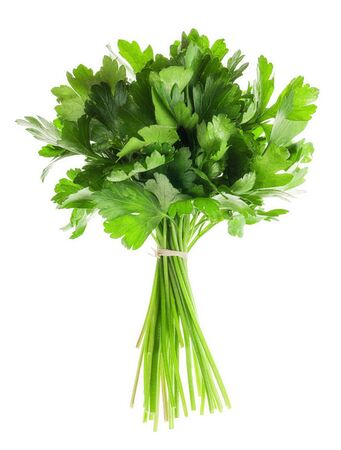 Bunch of fresh parsley isolated over white background