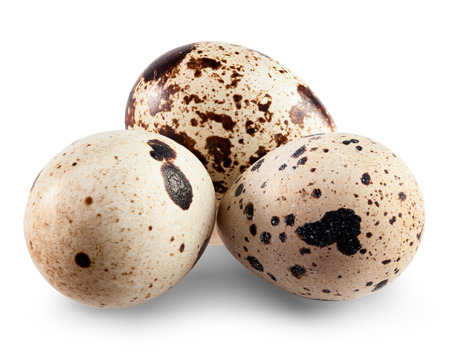 Quail eggs isolated on white background. Clipping Path
