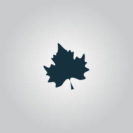 Maple Leaf. Flat web icon or sign isolated on grey background. Collection modern trend concept design style vector illustration symbolのイラスト素材