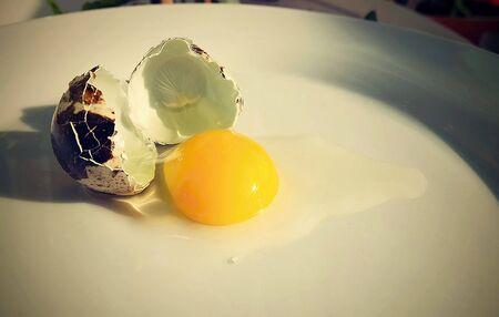 Broken healthy quail eggs ready to cook.