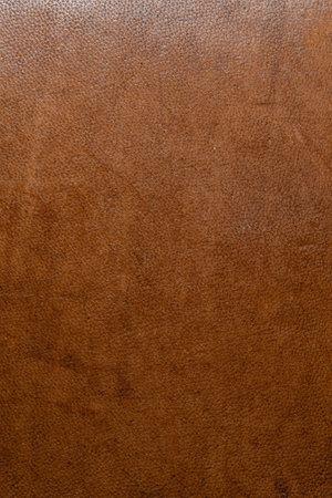 Photo pour leather grunge background: an old piece of tough camel skin, with scuffs, spots, scars - image libre de droit