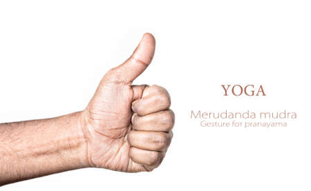 Hand in merudanda mudra by Indian man isolated at white background. Gesture for Activating the prana energy in the center of the chest, warms the body. Free space for your text