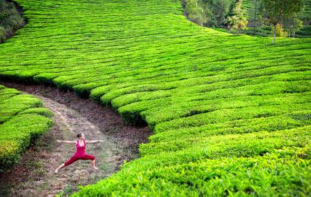 Photo pour Yoga virabhadrasana II warrior pose by woman in red cloth on tea plantations in Munnar hills, Kerala, India - image libre de droit