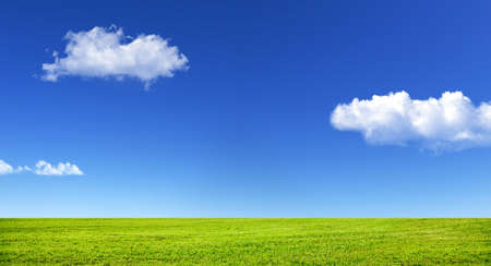 Foto de Green grass and blue sky with white clouds - Imagen libre de derechos