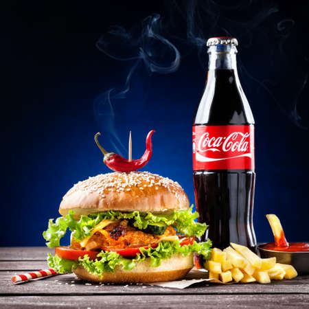 MUMBAI, INDIA %u2013 MAY 23, 2015: Veggie burger, French fries and Coca-Cola bottle - is the most popular carbonated soft drink beverages sold around the world
