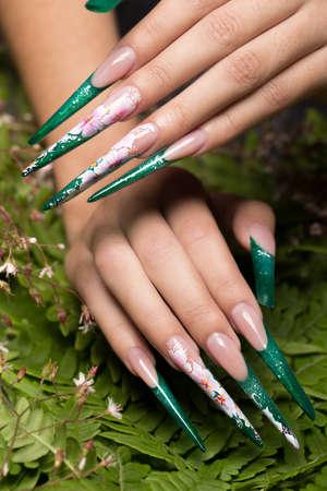 Photo pour Long beautiful manicure with flowers on female fingers. Nails design. Close-up. - image libre de droit