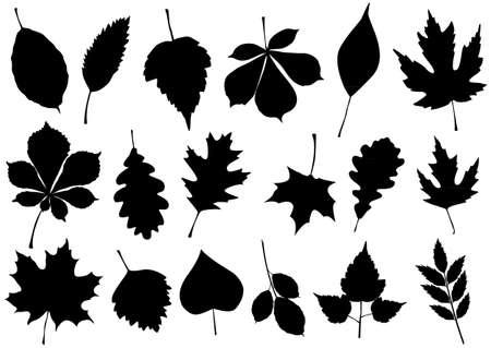 illustration set of 18 autumn leaf silhouettes.